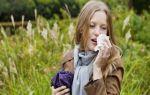 Сок алоэ от насморка: самое простое и эффективное народное средство