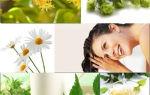 Ромашка для волос: свойства растения, рецепты на её основе