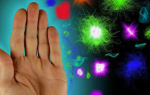 Пассивный иммунитет: что это и каковы условия появления пассивной защиты